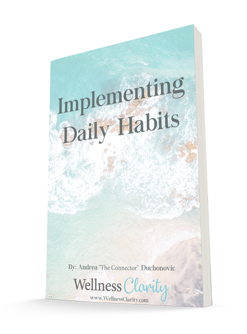 implementing-daily-habits-book-cover-500px