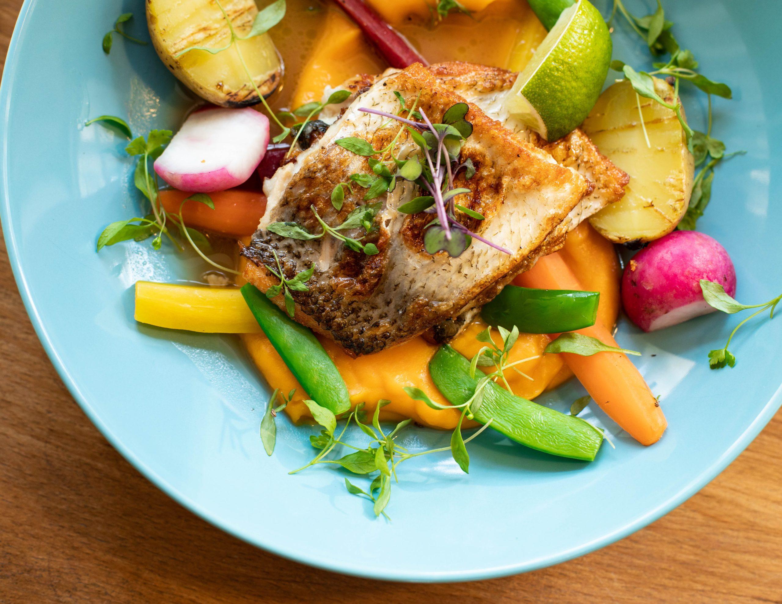 close-up-cuisine-delicious-1516415