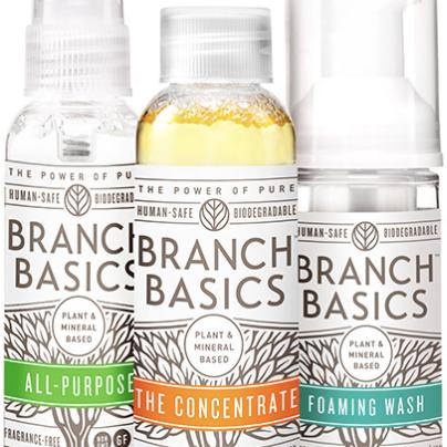 Branch Basics _ Image