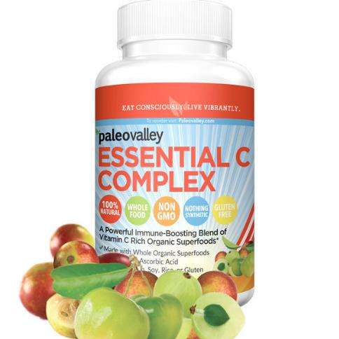 PaleoValley C-Complex